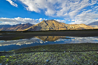 REFLECTION IN NUBRA VALLEY - Royalty free stock photo, image