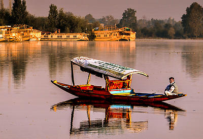 shikaras in dal lake - Royalty free stock photo, image