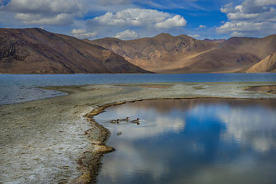 Pangyong Lake ,Ladakh - Royalty free stock photo, image