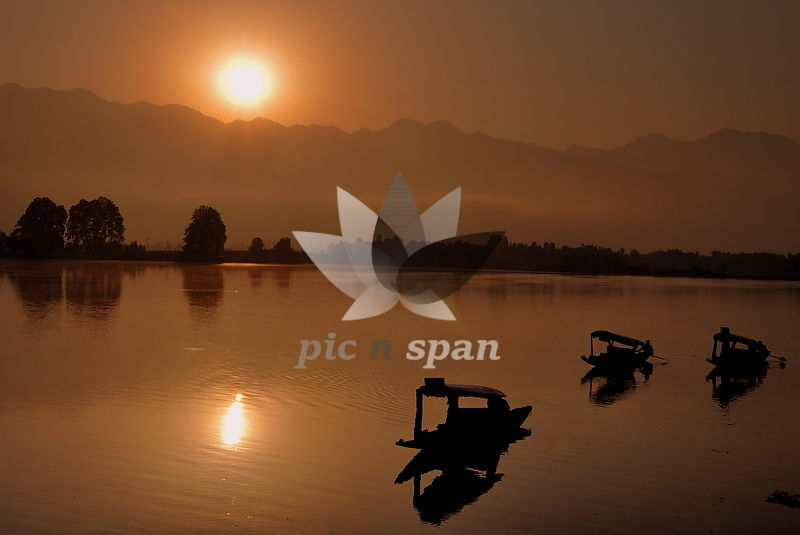 Morning Shikaras - Royalty free stock photo, image