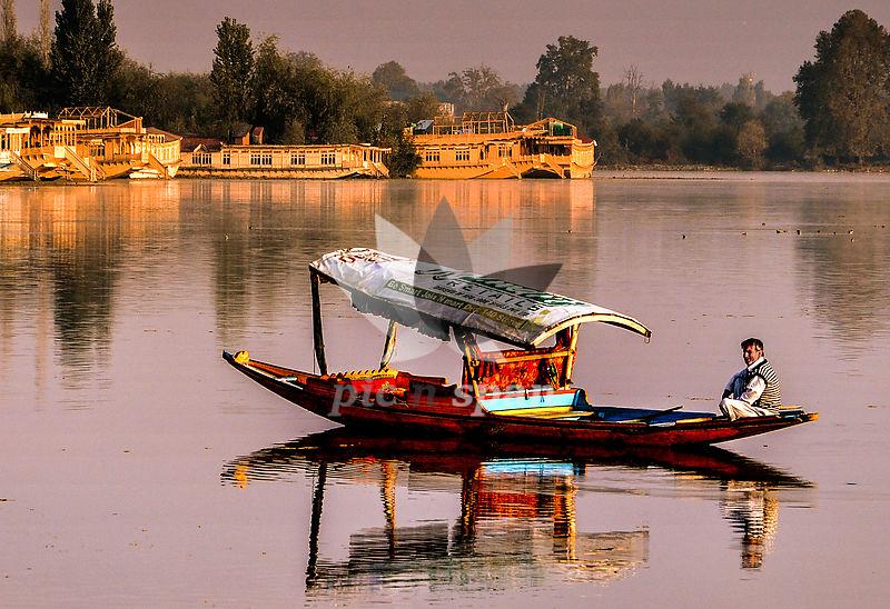 shikaras in dal lake - Royalty free stock photo, image