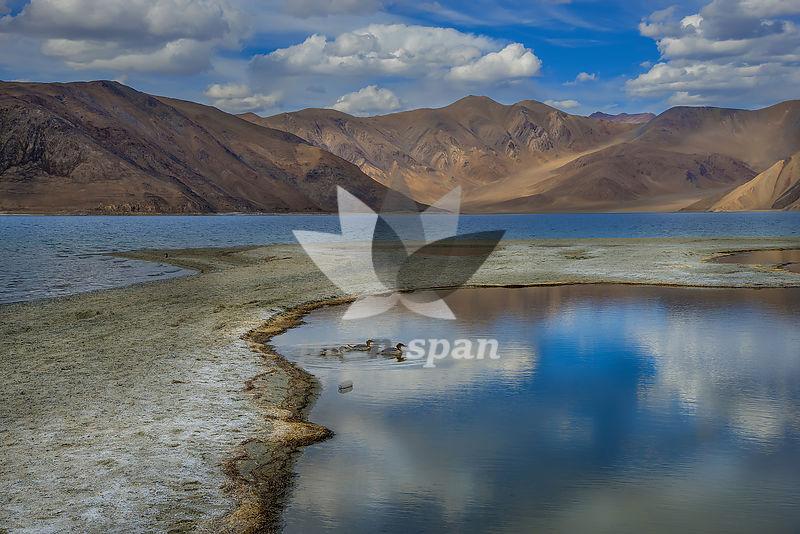 Pangyong Lake ,Ladakh - Royalty free stock photo, image