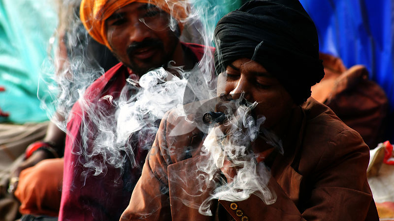Smoker - Royalty free stock photo, image
