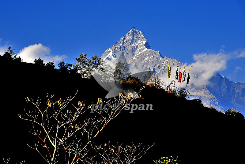 Mount Fishtail - Royalty free stock photo, image