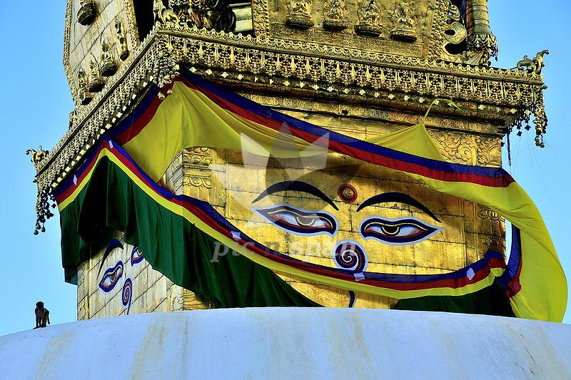 Buddha - Royalty free stock photo, image