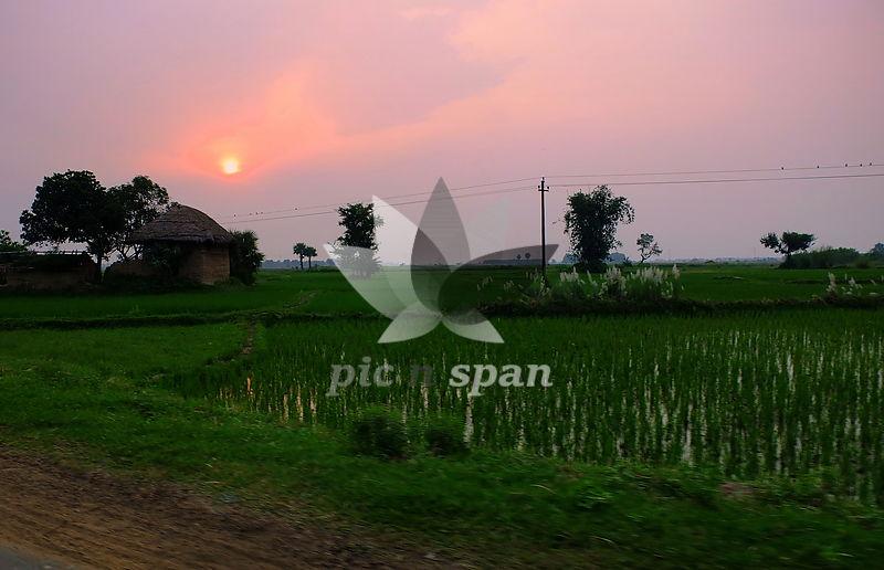 BK1- West Bengal village - Royalty free stock photo, image