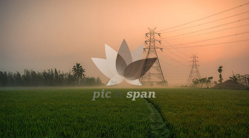 Foggy Morning - Royalty free stock photo, image