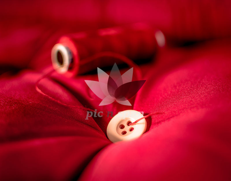 Button on a thread - Royalty free stock photo, image
